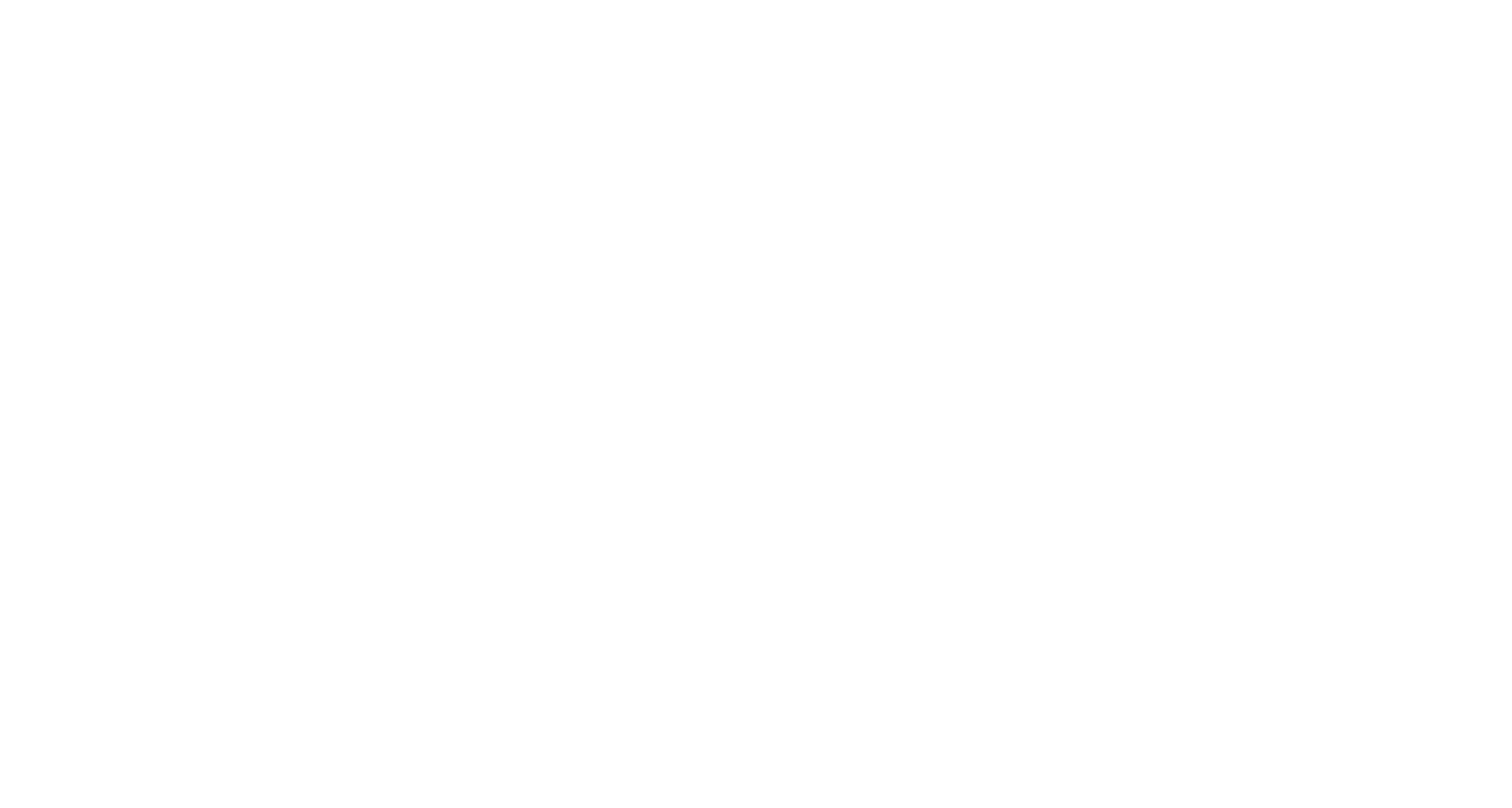 WASP Solutions Ltd.